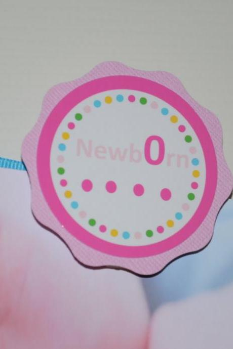 First Year Photo Small Clips, First Year Banner, Dots Birthday Party, Hot pink, Blue, Green and Light Pink Theme