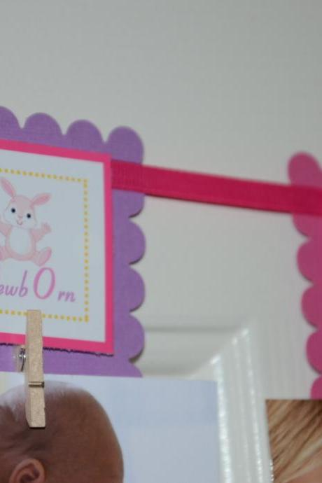 First Year Photo Mini Clips, First Year Banner, Bunny Birthday Party, Bunny Theme, Hot Pink and Light Purple