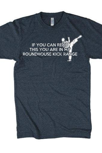Roundhouse Kick t shirt karate shirt S-3XL