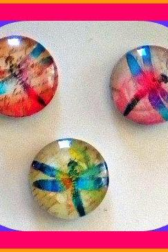 Magnets - Set of 3 - Dragonflies (Set 1) - 1 Inch Domed Glass Circles