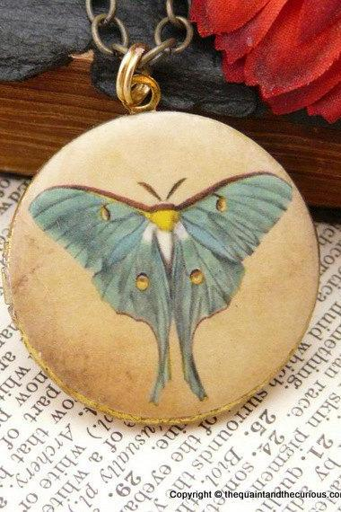 Luna Moth Locket - Butterfly Vintage Art Locket Pendant Necklace - Mothers Day Graduation Gift Present