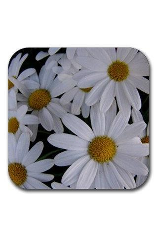 White Daisies Flowers Rubber Square Coasters Set 13209506 Custom Design Available