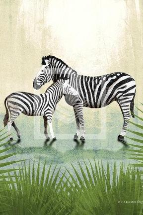 Jungle Safari Zebra Family Wall Art Decor Print by Caramel Expressions