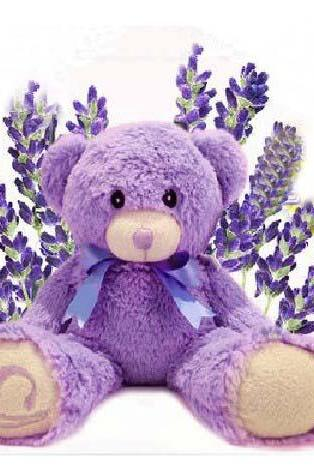Australia Lavender Bear ,Bridestowe Lavender Heat Bear, Teddy Bear Plush Toys, Purple Bear