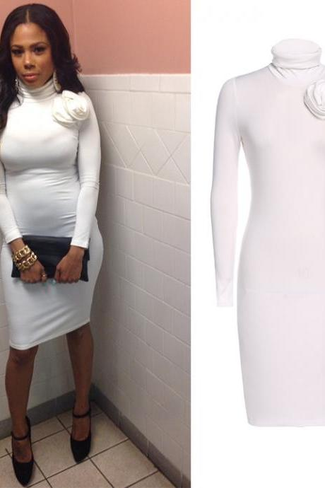 Long Sleeve Turtle Neck Bodycon Dress