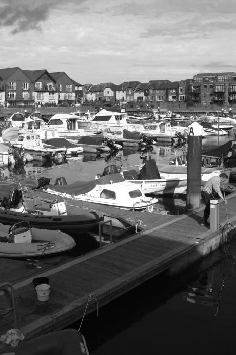 Limited Edition A4 Print: Exmouth Harbour