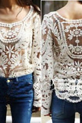 Embroidered Beige Lace Sheer Top